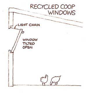 coop-windows1