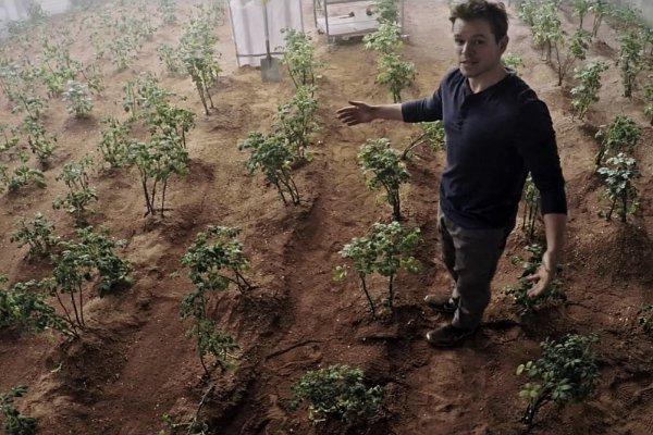 Matt Damon cultive des patates